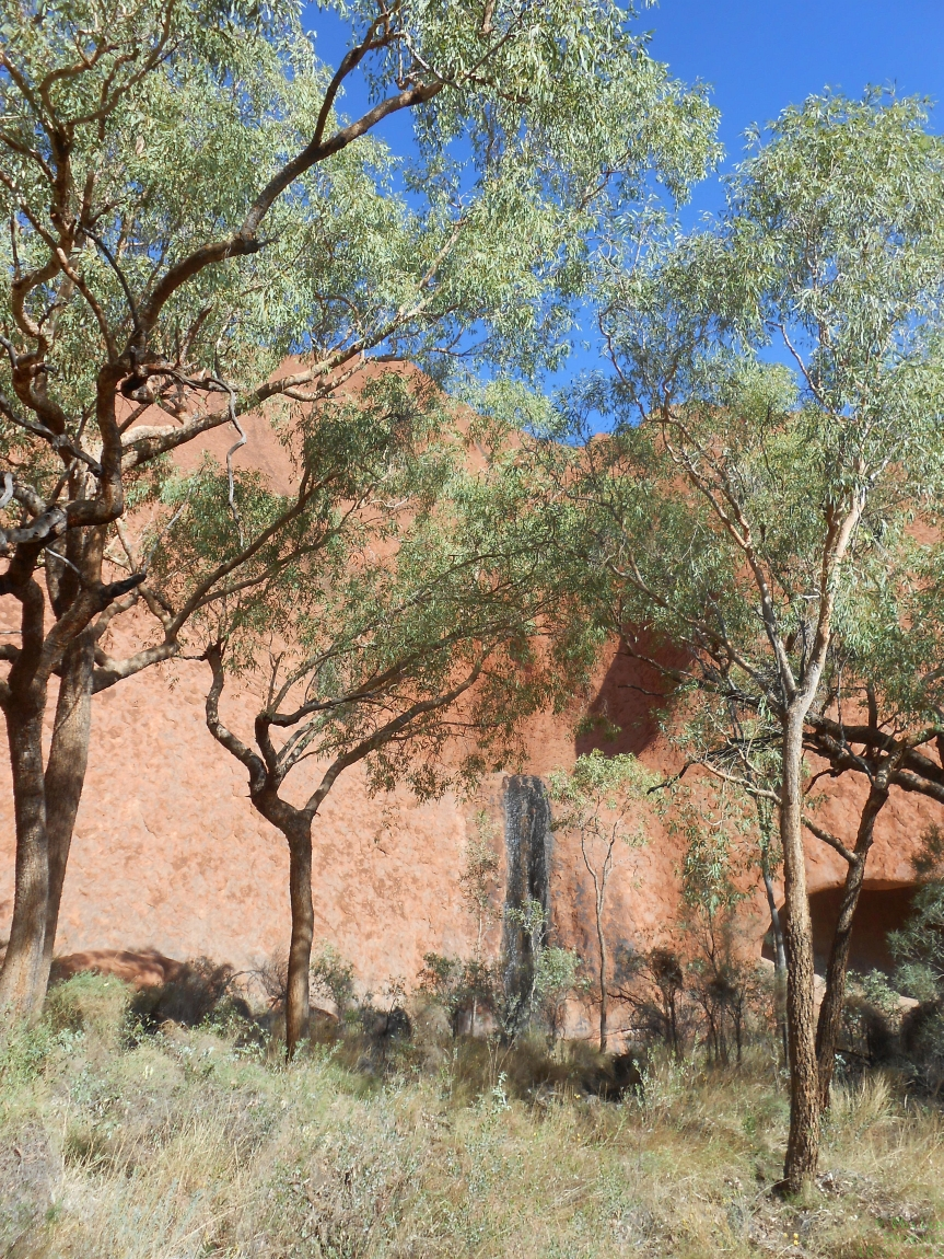 Uluru National Park Travel Photography